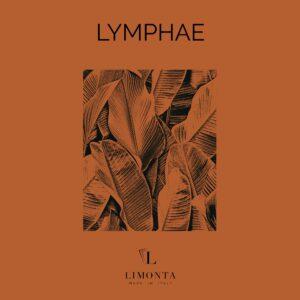Lymphae